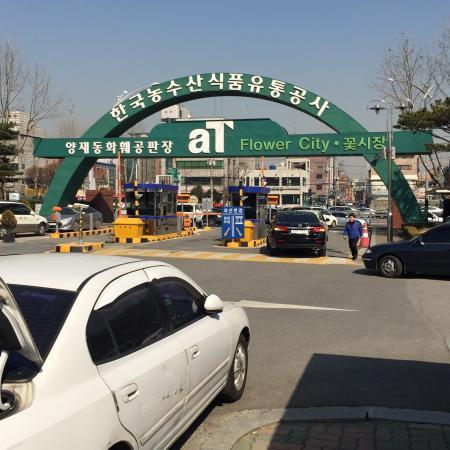 Yangjae Flower Market Center