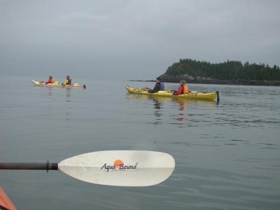 Seascape Kayak Tours Inc.: enjoying calm ocean waters.