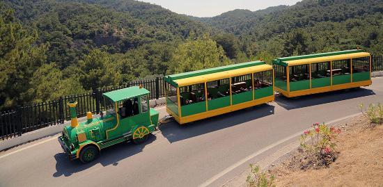 Πεταλούδες, Ελλάδα: Butterfly Train