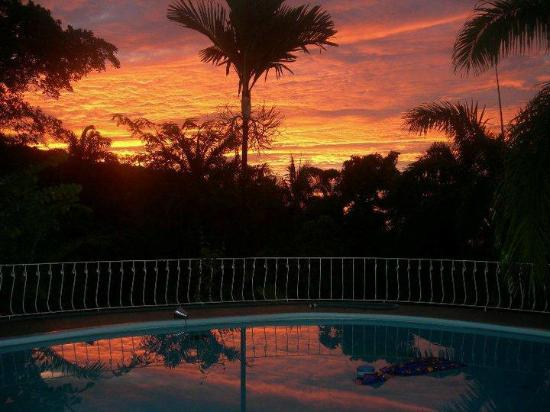 Garden House Jamaica : Sunset by the pool