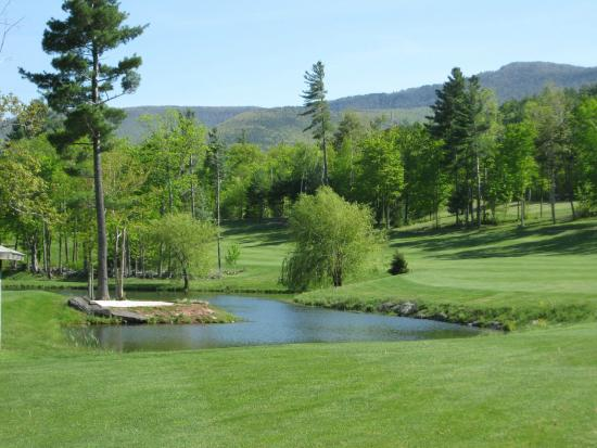 Blackhead Mountain Lodge and Country Club: Golf