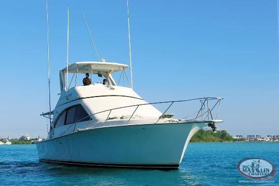 Big Marlin Charters Boca Chica