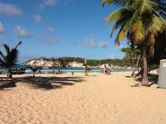 Grand Palladium Bavaro Suites Resort & Spa: Beach view
