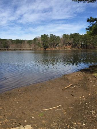 Candlewood Suites Raleigh - Crabtree: Hiking at Shelly Lake about 1 mile from the Candlewood
