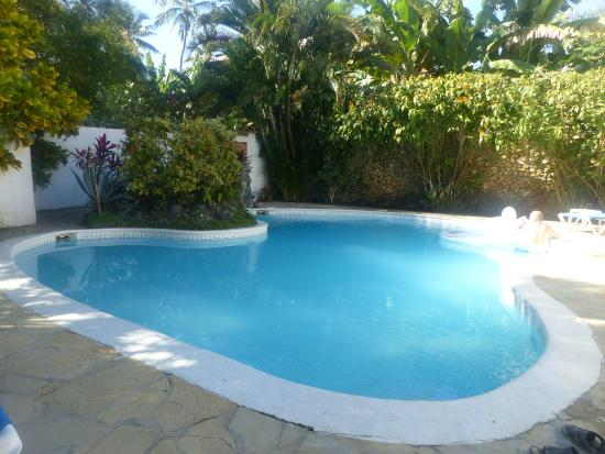 Casa Blanca Hotel & Surf Camp: nice pool