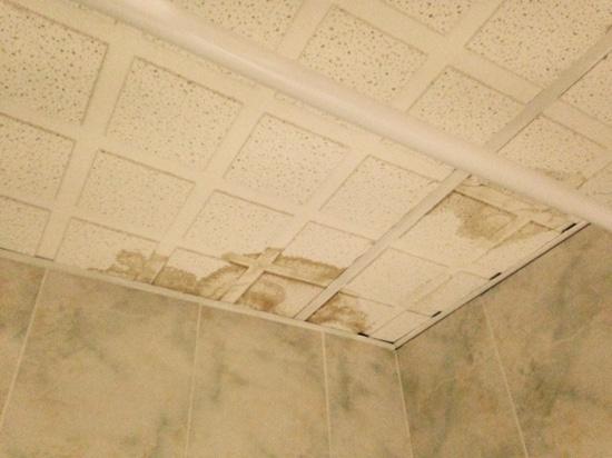 Stallingborough Grange Hotel: spot on ceiling