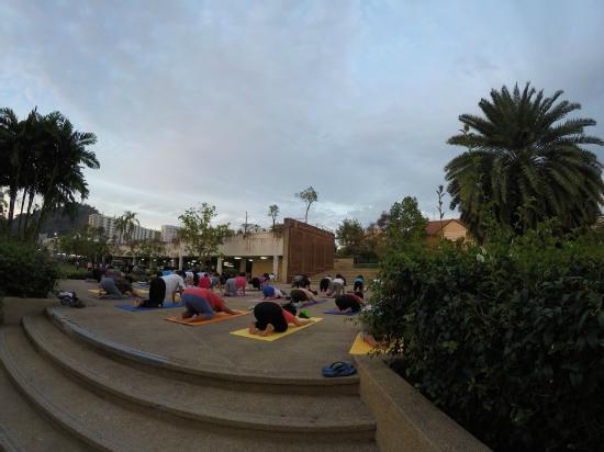 D's Corner & Guesthouse : парк рядом