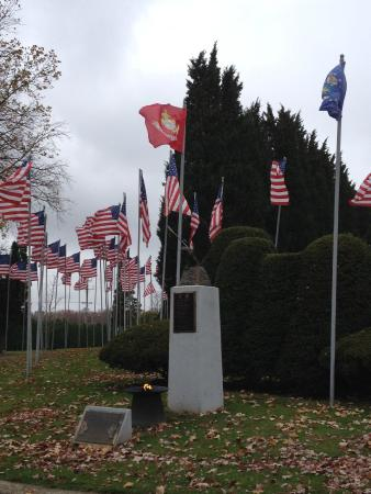 The Avenue of 444 Flags : November 2014