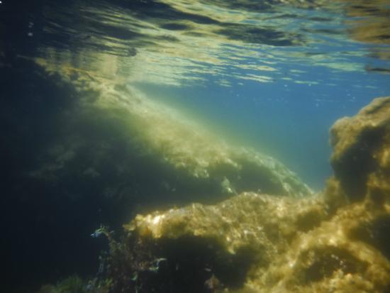 Cueva de Pesces : environnement sous-marin