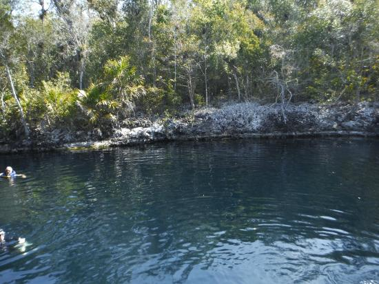 Cueva de Pesces : cueva