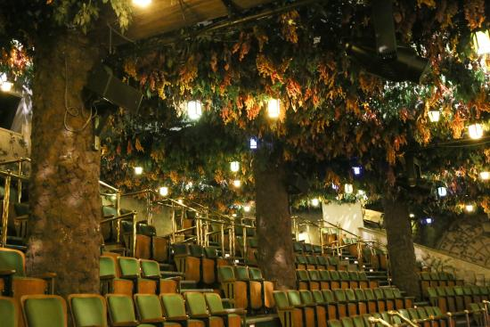Image result for the elgin and winter garden theatre centre toronto
