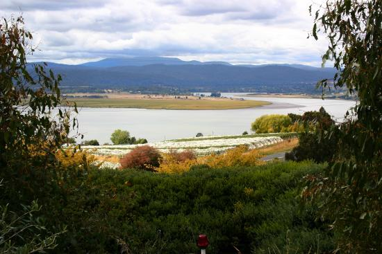 Rosevears, Australia: The view from the Tamar Ridge Cellar Door
