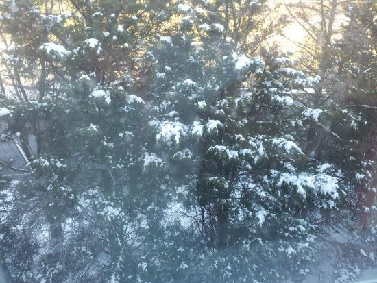 Comfort Inn Ballston: Vista do quarto com neve