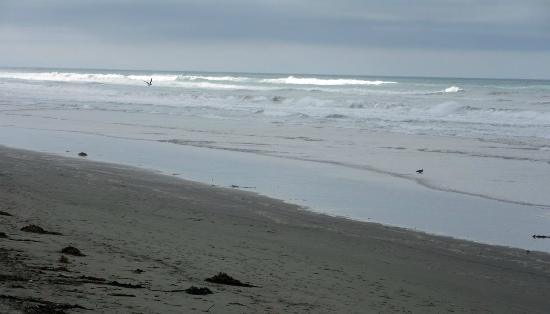 Waimairi Beach: North for waves and space