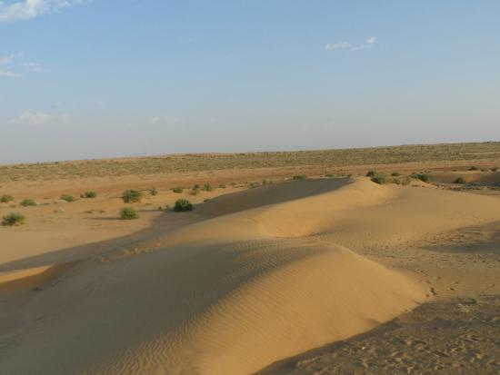 Deserto de Thar - Picture of Thar Desert, Rajasthan ...