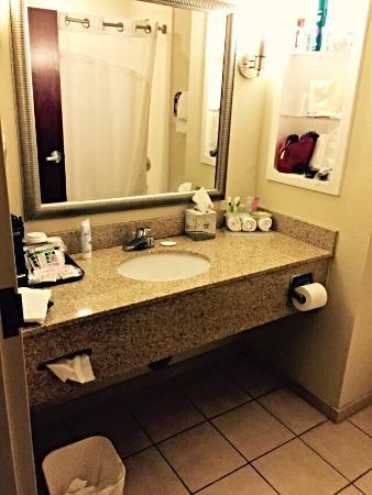Holiday Inn Express Hotel & Suites Savannah-Midtown : Bathroom is spacious and updated.