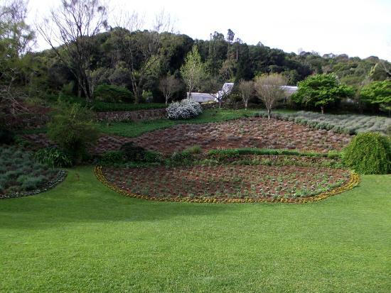 Le jardim foto de le jardin parque de lavanda gramado for Jardines de lavanda