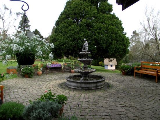 Le jardim picture of le jardin parque de lavanda for Jardines de lavanda