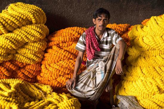 Calcutta Photo Tours : Marigold Garlands in the Kolkata Flower Market