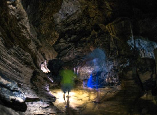 Whangarei, Nuova Zelanda: walking in it's wet and it gets deeper and darker