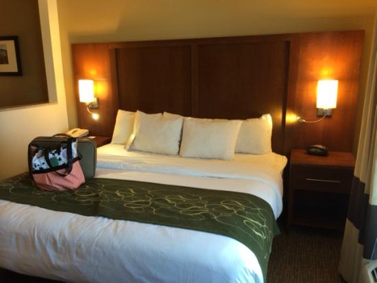 Comfort Suites Airport: King Size Bed