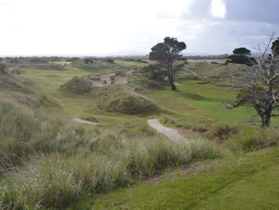 Par 3 fifth at Barnbougle Dunes.