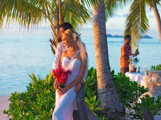 피지 사진
