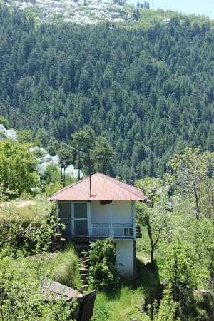 Banjara Camps - Thanedar: Saroga Forest Trek