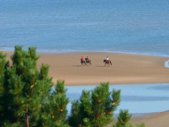 La Ferme Manoir Saint Barthelemy: Balade à cheval sur les plages du Débarquement