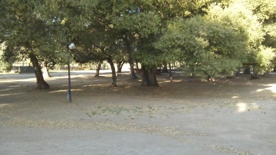 Rancho Los Chabacanos: instalaciones descuidadas y sucias