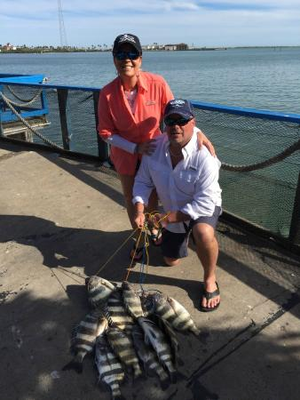 Osprey fishing sheepshead march 2015 picture of osprey for Deep sea fishing south padre island