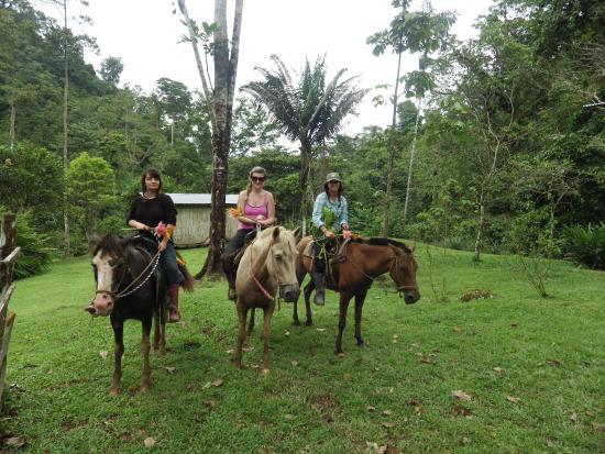 Rambala, Panamá: Horseback riding