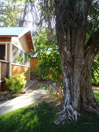 Coho Cottages Updated 2017 Prices Amp Hotel Reviews