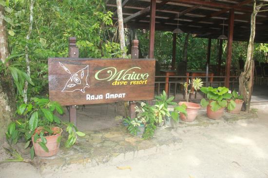Waiwo dive resort r m 8 0 8 rm610 updated 2018 reviews - Dive resort raja ampat ...