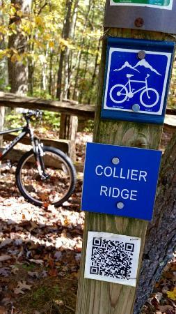 Borderland Expeditions: Collier Ridge Bike Trail