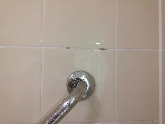 Premier Inn Harrogate South Hotel: Mold on bathroom wall