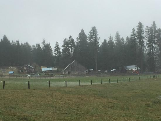 Willow-Witt Ranch: View of the barns and farmhouse from one of our hikes