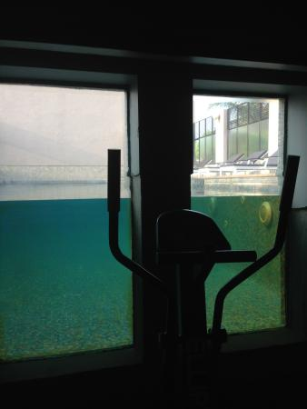 Deccan Rendezvous: Pool view from Gym