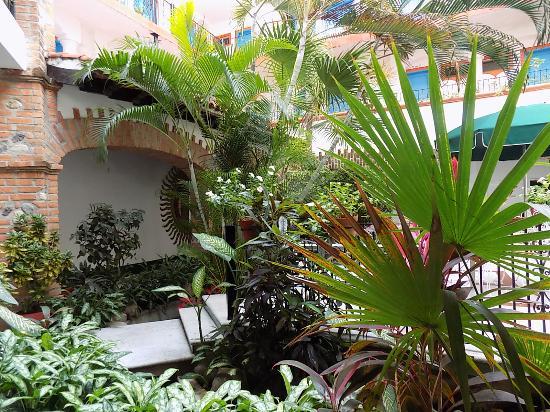 Encino Hotel: Jardin central