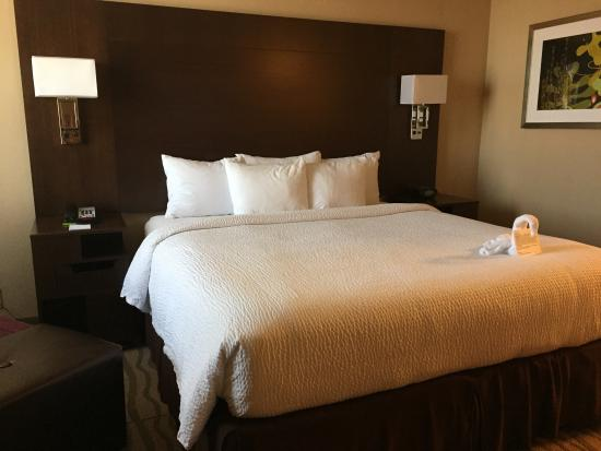 Fairfield Inn & Suites Dallas DFW Airport South/Irving: standard King.  room 400