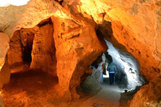 Minik yarasalar - Picture of Bulak Cave, Safranbolu ...