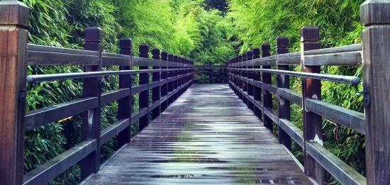 Fort Worth Botanic Garden Tx Top Tips Before You Go With Photos Tripadvisor