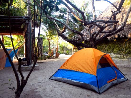 Hostel & Cabanas Ida y Vuelta Camping: Zona de camping en Ida y Vuelta Holbox