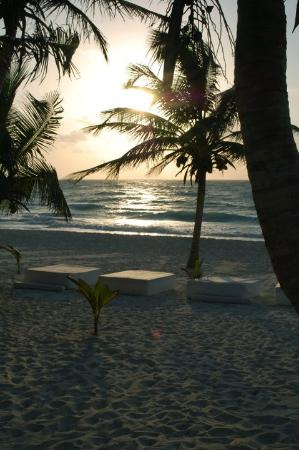 Cabanas Tulum: Natural beauty at it's finest
