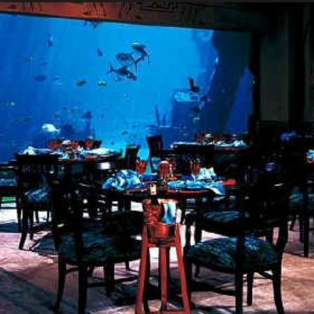 Cafe At The Great Hall Of Waters Closed Atlantis Paradise Island