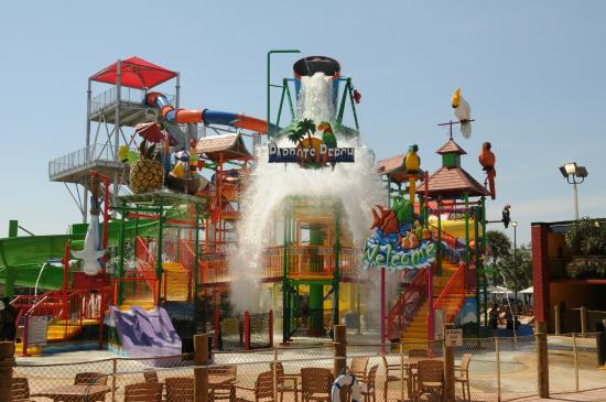 Coco Key Hotel And Water Park Resort Parrot S Perch Interactive Play Island