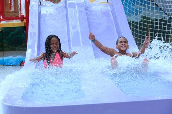 CoCo Key Water Resort: Parrot's Perch Toddler Slides