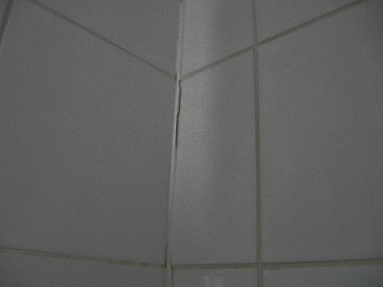 The White Hart Hotel, Eatery & Coffee House: grouting needs renewed