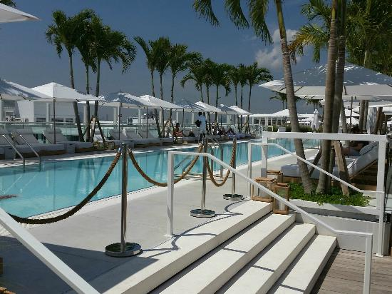 Rooftop Pool Picture Of 1 Hotel South Beach Miami Beach
