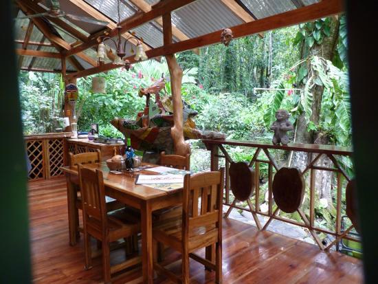 Congo Bongo Boutique Guest Houses: dans la nature